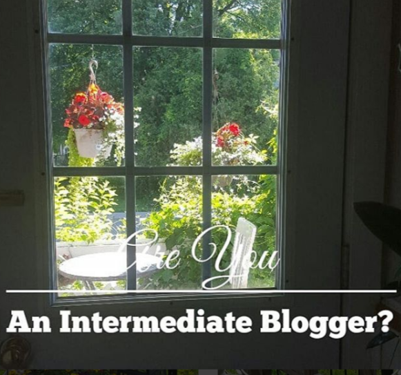Intermediate blogger